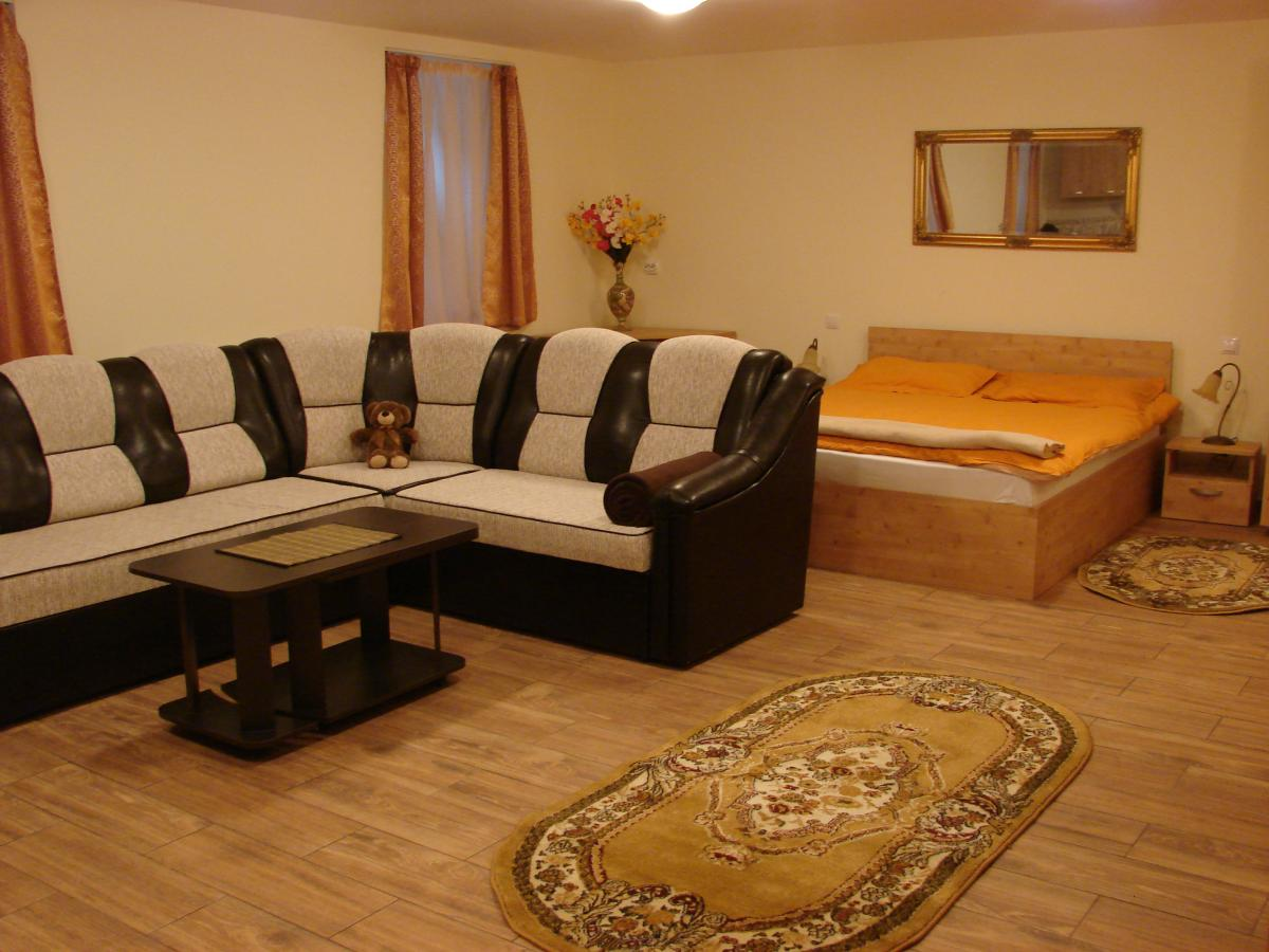 Open Plan Apartment for rent in Cluj City Center (3)